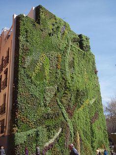 Caixa forum Madrid Wall garden