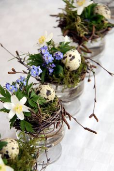 A small simple twig wreath, sprig of Forget-me-nots, a delicate white flower wrapped in moss, along side a petite speckled birds egg, all perched atop a short stemmed glass makes such a simple but pretty centerpiece!
