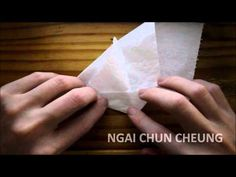 Origami Toilet Paper Sailboat (Tutorial)