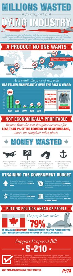 [INFOGRAPHIC] Canada's Commercial Seal Slaughter: A Dying Industry