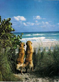 A Day @ The #Beach