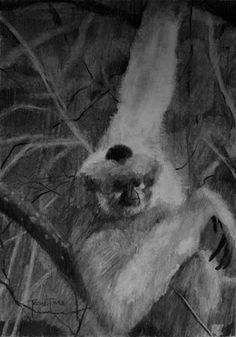 (SOLD) #42 Buff-Cheeked Gibbon
