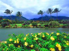 plantations, favorit place, ocean views, maui tropic, beauty, travel, tropic plantat, nature scenes, hawaii