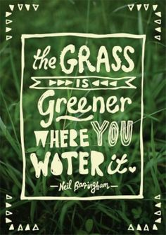 relationship, water, remember this, grass, green, thought, inspirational quotes, garden, true stories