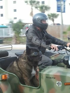 Humans wear goggles to protect their eyes so why shouldn't your sidekick? Doggles make riding look GOOOOD!