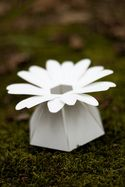 love these color-customizable #DIY paper flower #favor boxes - for #weddings, parties, you name it!