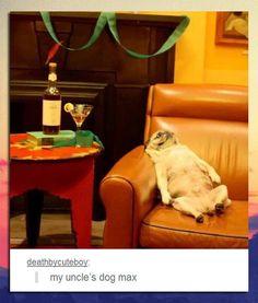 I don't go to parties, but I'd go to this party.