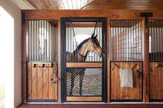 Horse Stall Doors - Lucas Equine Equipment - Custom Horse Stable Doors