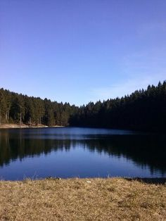 Lake near Hahnenklee, Harz, Germany