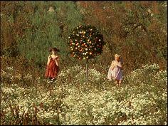daisies, 1966 Czech film