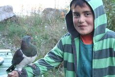 Nature - we get outside all the time. Here is Kereru bonding!