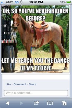 Horse humor via The Funky Cowgirl on FB :  )