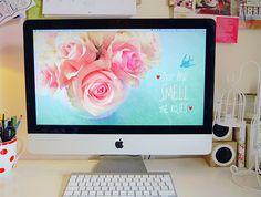 Free Download: Desktop Wallpaper