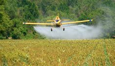 Tell USDA to keep Agent Orange out of our food supply!! Sign the petition.