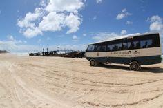 Us and our bus... shared by Koves.  #fraserexplorer #fraserisland #queensland #australia www.fraserexplorertours.com.au