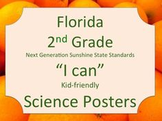 Florida 2nd Second Grade Science Standards NGSSS Orange Border