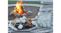 How To Make Your Own Fire Starters + a recipe for Gluten-free Graham Crackers!