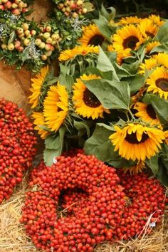 Sunflowers and berries.