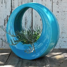 The Circle Pot by Potted