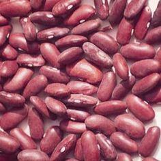 Dark Red Kidney Shell Beans....