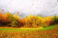 love fall weather:)