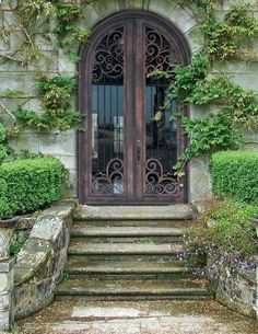 French country wrought iron and glass double front doors, antique TC