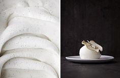 Morten Heiberg / Icecream Cookbook