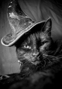 I put a spell on you--Hee Hee!