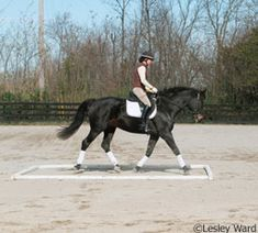 Exercises to beat boredom and improve your horses skills.
