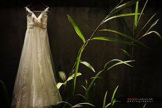 Daniel Aguilar - Mind Bending Wedding Photographer