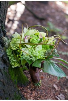rustic green orchid bouquet