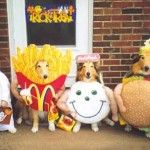 Funny dogs dressed up as fast food for the halloween party!