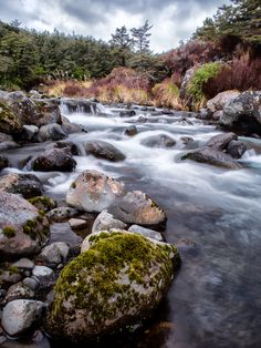 National Park North Island , New Zealand.