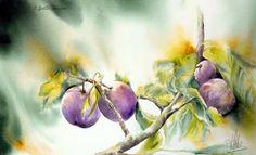 vegetal-prunes.jpg (700×426)