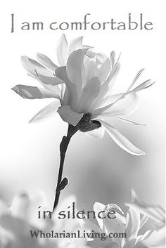 white flowers, magnolias, white roses, bazaart pin, flower designs, blanco y negro, garden, black, beautiful flowers photography