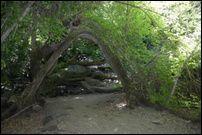 shade hikes in Utah