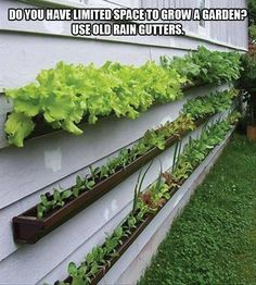 "Short on garden space, but longing for your own veggie patch? What about this clever project? We have more inspiration in our ""Vertical Gardens"" album on our site at http://theownerbuildernetwork.co/landscaping-and-gardens/vertical-gardens/ Let us know what you think by writing your opinions below."