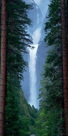 Nature's picture frame at Lower Yosemite Falls in California •
