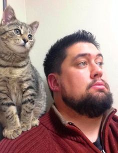 Stray cat wandered into a man's life and stole his heart. #catsandtheirpeople