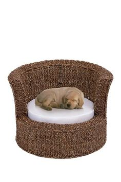 Rattan Pet Bed by UMA Enterprises Inc.... only if it comes with the dog!
