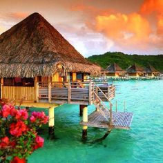 A flight to Morea or Bora Bora.