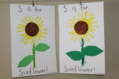 S is for Sunflower.