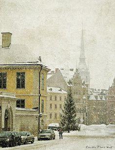 Winter in Stockholm ...
