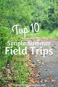 Take some time this summer for a fun (and educational) summer field trip. You should be able to find several on this list located nearby! Creative Family Fun: Top 10 Simple Summer Field Trips