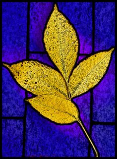 yellow-leaves-stained-glass_6142.jpg