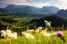 Relax in the picturesque Kaiserwinkl region in Tirol, Austria  #austria #tirol #kaiserwinkl #nature #mountains #summer