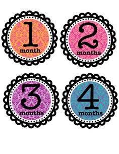 monthly onesie stickers. $8.