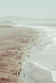 Ocean Beach, San Francisco.  Looking at this, it's hard to believe that SF is the 2nd most densely populated city in the U.S.