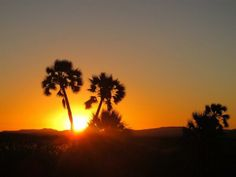 Namibia is home to some of the most gorgeous sunsets via @Federica Eliana