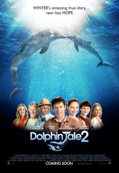 Celebrate Homeschool Day with Dolphin Tale 2: First hand look at Dolphin Tale 2 before it hits theaters Septemeber 12 | HSLDA Blog
